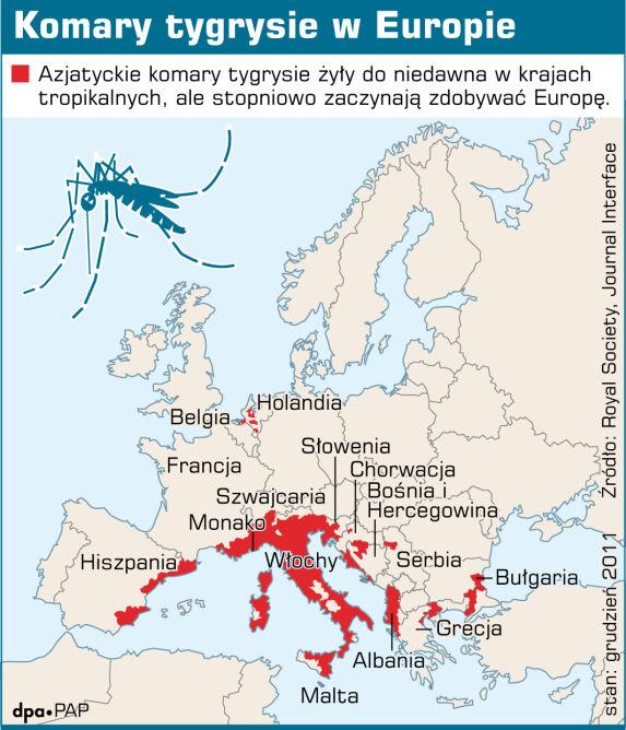 Komary tygrysie w Europie, dane z grudnia 2011 roku (PAP/DPA/Adam Ziemienowicz)