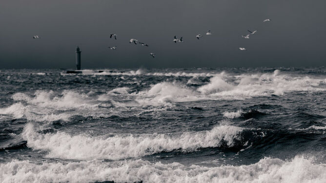 Uwaga na silny wiatr na północy. Prognoza zagrożeń IMGW