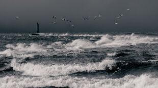Sztorm, porywisty wiatr, ulewny deszcz. Alarmy IMGW dla północy Polski